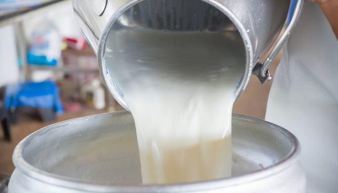 शेतकऱ्याचं एक थेंबही दूध शिल्लक राहणार नाही, दुग्धविकास मंत्र्यांची ग्वाही