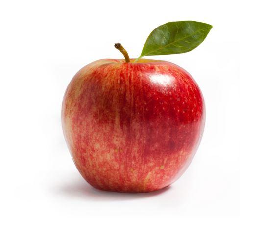 , हिवाळ्यात निरोगी राहण्यासाठी ही फळं खा