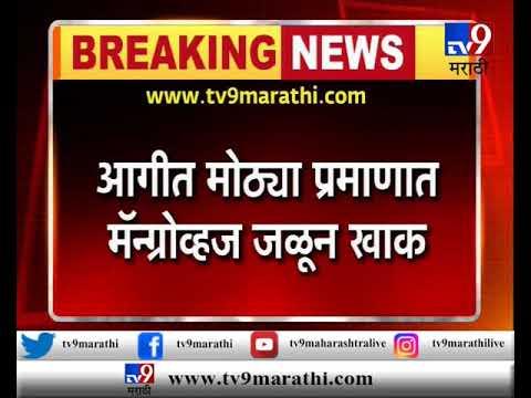 नवी मुंबई : वाशी रेल्वेस्थानकाजवळ मॅन्ग्रोव्हजला भीषण आग