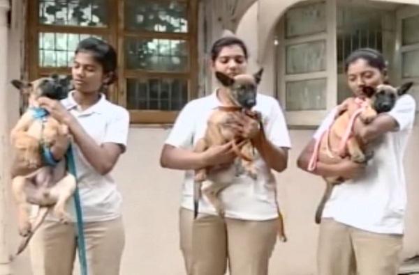 मुंबई पोलिसात 5 नवे खतरनाक पहारेकरी!