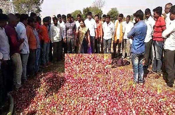 Onion Import, स्वदेशी कांद्याची परदेशी कांद्यावर मात, देशी कांदा प्रति क्विंटल 13 हजारांच्या पार