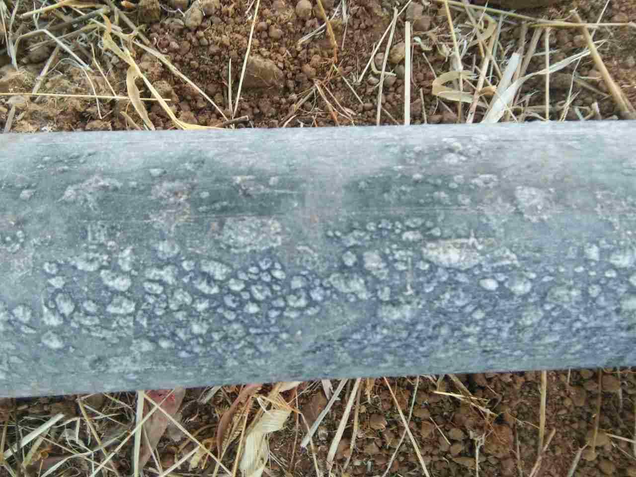, थंडीचा कडाका वाढला, नंदुरबारमध्ये दवबिंदू गोठले