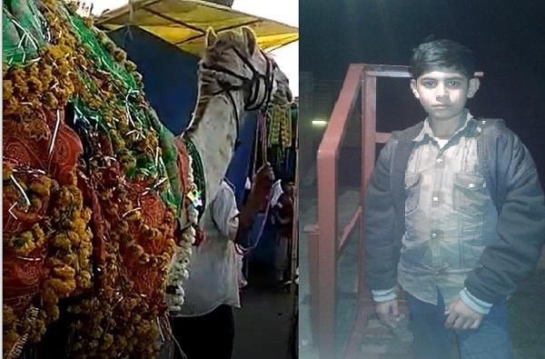 उंटाने चावा घेतल्याने 16 वर्षीय तरुणाचा मृत्यू