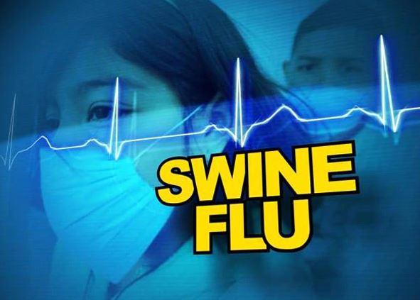 Swine-flu, राज्याला स्वाईन फ्लूचा विळखा, महिनाभरात 15, तर 9 महिन्यात 212 जणांचा मृत्यू
