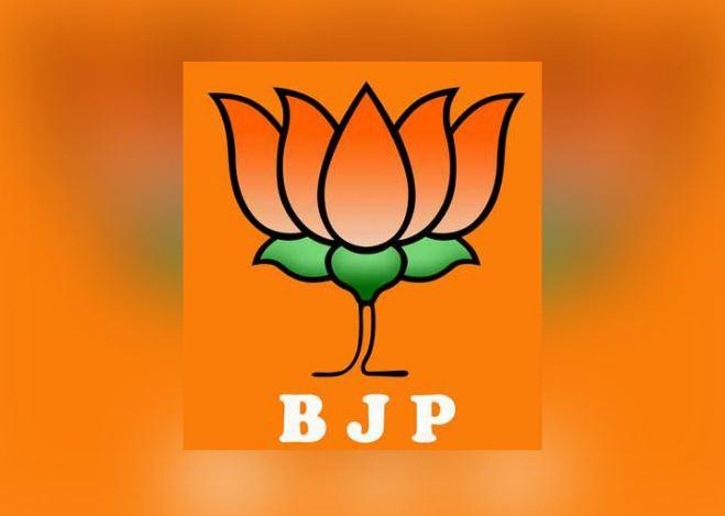 Loksabha Election 2019, भाजपची दुसरी यादी जाहीर, एकच उमेदवार घोषित