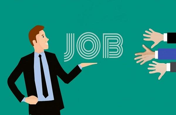 नवीन वर्षात 'या' क्षेत्रात मोठ्या प्रमाणात नोकरीची सुवर्णसंधी