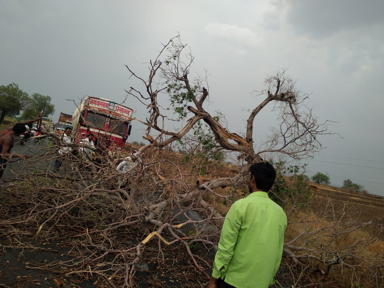 बीड, लातूरमध्ये वादळी वाऱ्यासह गारपीट, झाडं उन्मळून पडली