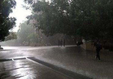 चार दिवसात पाऊस केरळात दाखल होणार