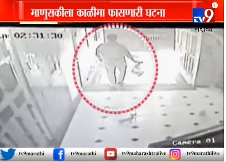मीरा रोड : मांजरीच्या पिल्लांना जिवंत जाळण्याचा प्रयत्न, विकृत कृत्य CCTV मध्ये कैद