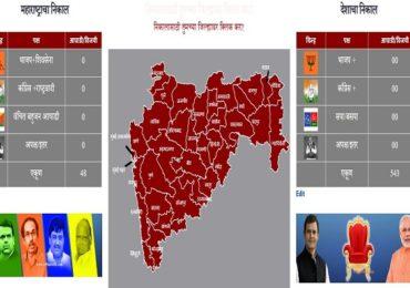 constituency wise election result : मतदारसंघनिहाय निकाल कसा पाहाल?